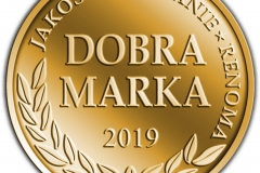 DM-2019_-logo