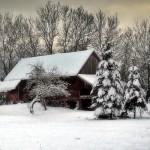zima Gmina Tymbark