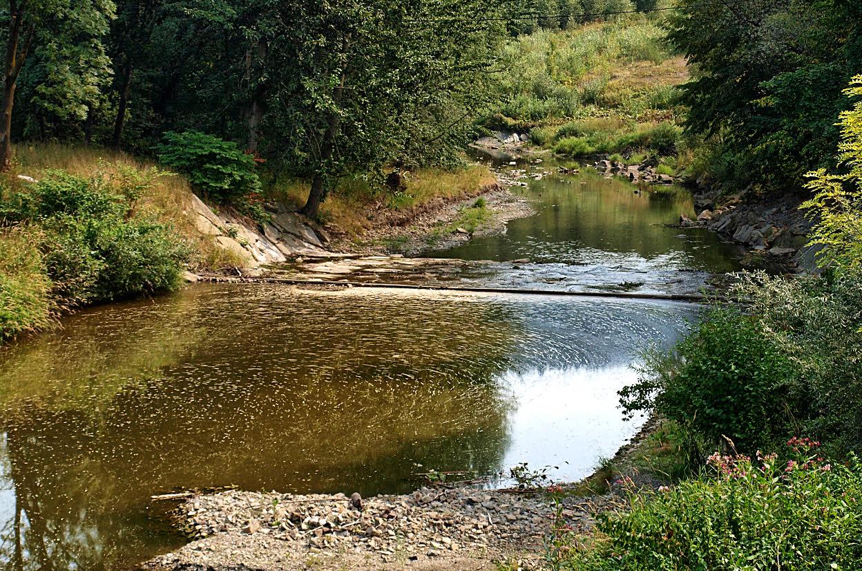 rzeka łososinka