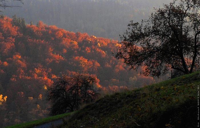 jesiennie3