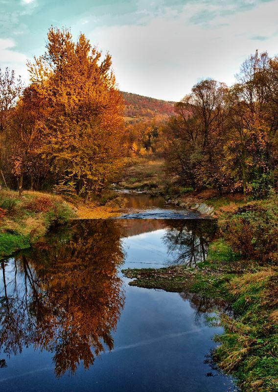 rzeka Łosinka