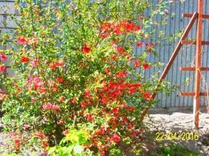 wiosenn kolory2