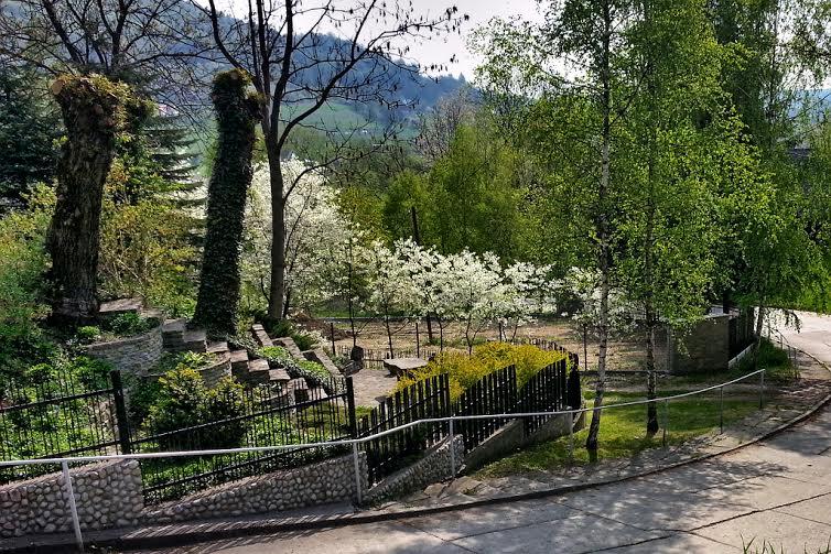 Wiosenny Tymbark