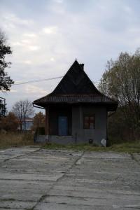 pazdzernik2010.5