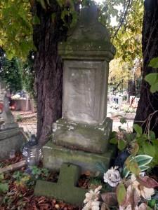 cmentarz (16)