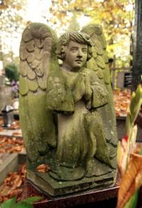 cmentarz (40)