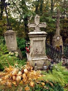 cmentarz (41)
