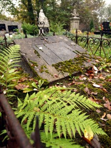 cmentarz (46)
