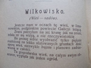 21) GALICYA - WILKOWISKO